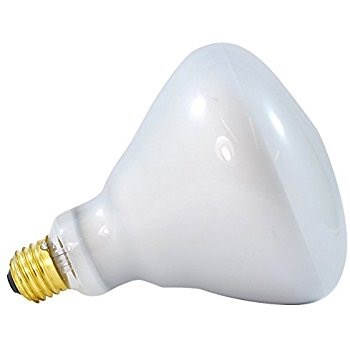 130V 85W Bulb