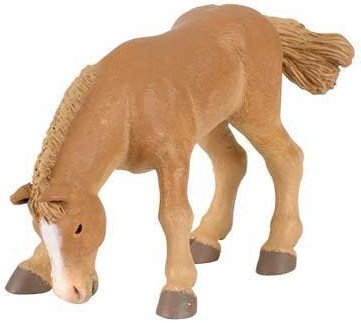 Boulonnais Foal