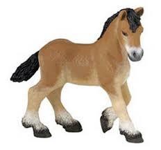 Ardennais Draft Foal